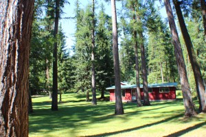 Enjoy the big level lawn and towering pines.